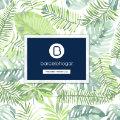 Catálogo Primavera-Verano Barcelohogar 2019